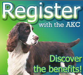 Is Your Dog Registered with the AKC?