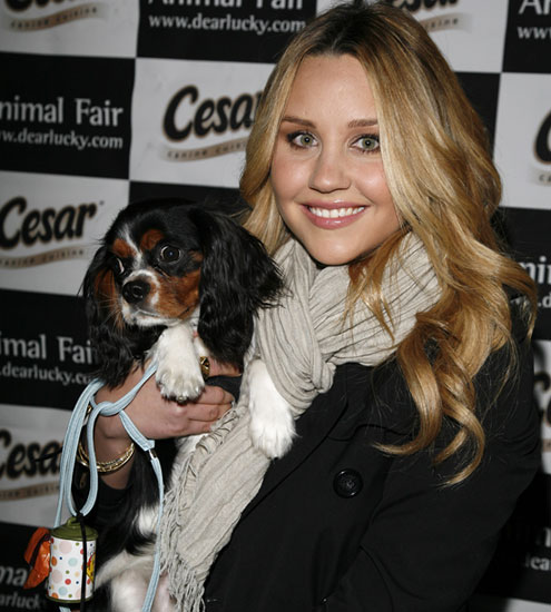 Charlie (and Amanda Bynes) on the Cover of Animal Fair Magazine