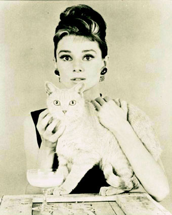 Audrey: My Idol