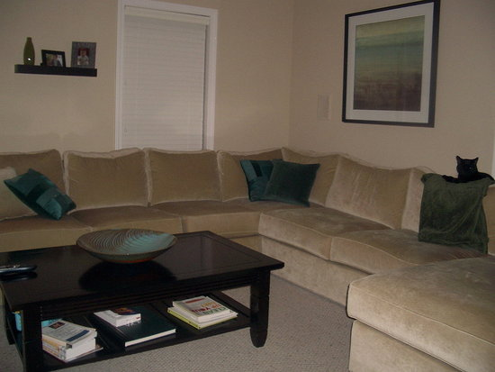 Family room with the roomy couch I love.