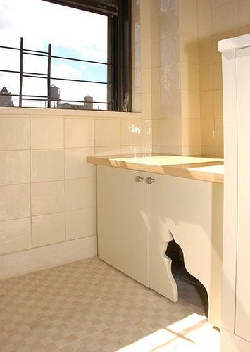 Cool Idea: A Kitty Litter Cabinet