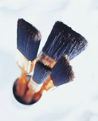 Casa Quickie:  Dual-Purpose Paint Brush