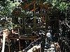 Coveted Crib: A Recycled Treehouse
