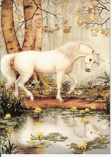 ~UNICORNS ARE REAL~ Rate this blank card!