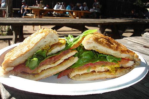 Sunny Chicken Sandwich