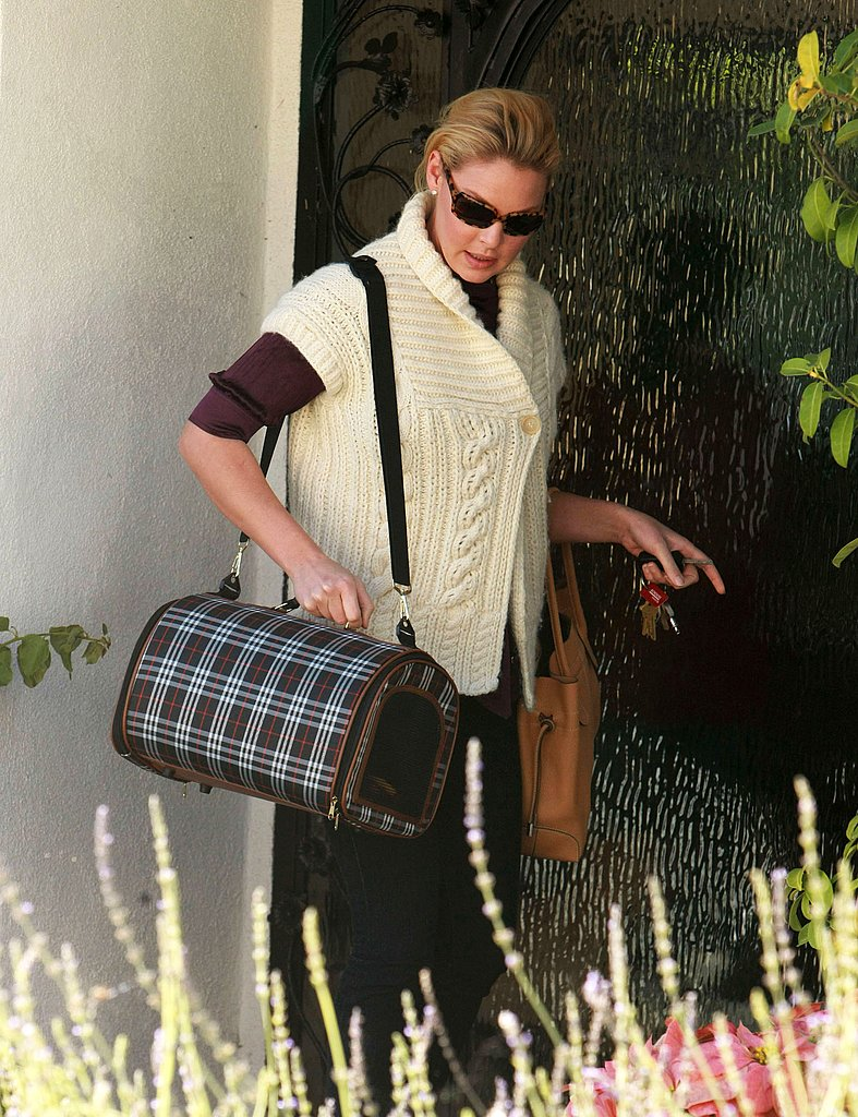 Katherine Heigl Adopts Another Puppy!