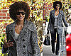 Photos of Halle Berry With a New Hair Style in Toronto, Rumored to Have Bought A New House in Canada with Gabriel