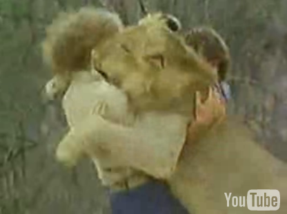 Cute Alert: Lion Has Two Daddies