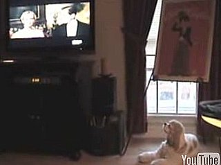 Dog Sings Opera Music