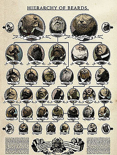 Product of the Day: The Hierarchy of Beards Poster