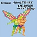 "New Bonnie ""Prince"" Billy Album: Lie Down in the Light"