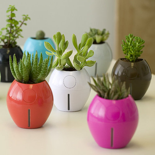 Karim Rashid's Grobal Plant Pots Are Self-Watering