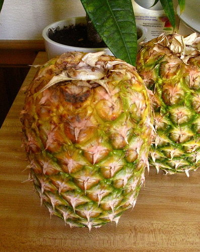 Simple Tip: Store Your Pineapples Upside Down