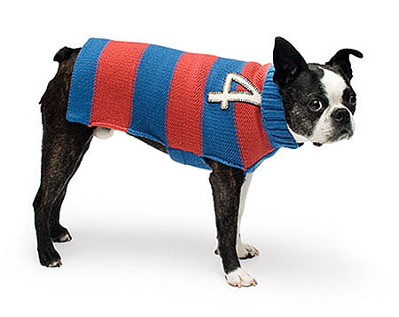Rugby Stripe Sweater ($40)