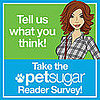 Take the PetSugar Survey, Make North Happy!