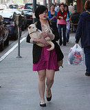 Kelly Osbourne Carries Her Unleashed Shiba Inu Pup