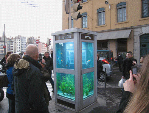 Aquarium Phone Booth