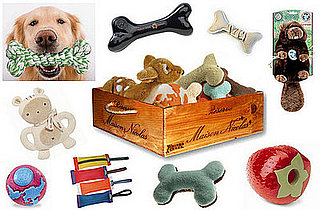 Sugar Shout Out: Win a Box of Eco-Friendly Dog Toys!