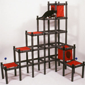 Do You Have Room For a Cat Playground?