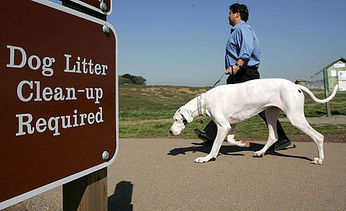 Would You Provide Doggie's DNA to Stop Unscooped Poop?