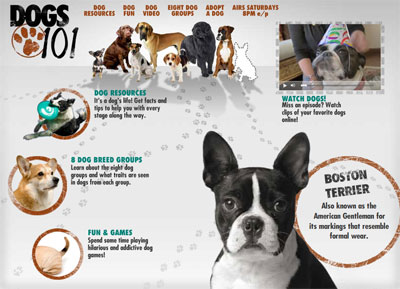 Tune In, Saturday! Animal Planet&#039;s Dogs 101