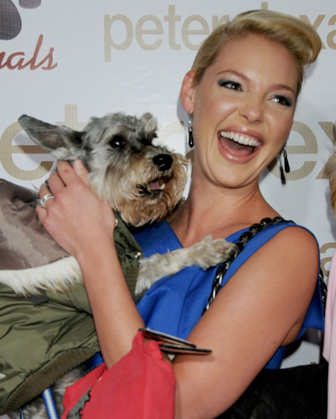 In the Spotlight: Katherine Heigl's Lil Romeo