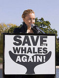 The Scoop: Hayden Wants to Save the Whales Again