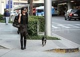 Famke Janssen and Licorice Take a Poop Stop at LAX