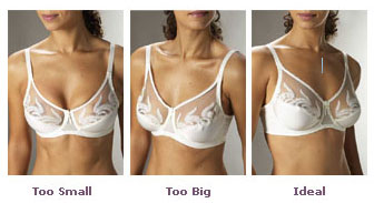Tricks Another Mama Taught Me: Bra Fitting