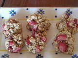 Stawberry Oat Dog Treats