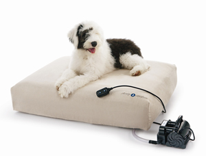 Win a Sleep Number Pet Bed!