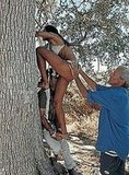 Photographer Peter Beard helps Emanuela De Paula scale a tree.