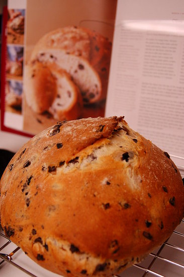 Olive Bread. This was a fantastic recipe and I'll definitely make it again. Recipe from: Williams-Sonoma Essentials of Baking