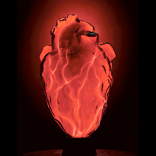 This anatomically-correct heart vase will provide some much-needed light. For a heart surgeon's office, perhaps . . .