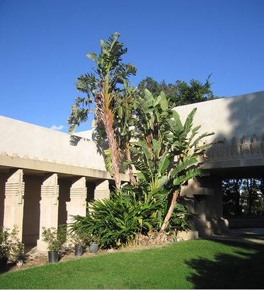 The Hollyhock House was built between 1919 and 1921, and embodies Wright's early efforts to develop a regionally appropriate style for Southern California.