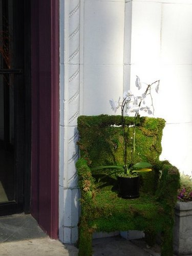 How-To:  Create a Moss Chair