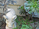 A small garden statue makes friends with a succulent plant.