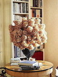 Voluminous dried blooms are a sculptural statement when displayed in this textured black vase.