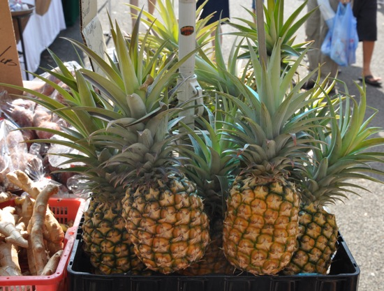 Exploring the Farmers Market of Oahu