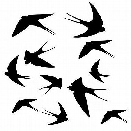 Assorted Swallows Wall Graphic ($12) 