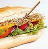 Alfalfa Sprouts Linked to Salmonella