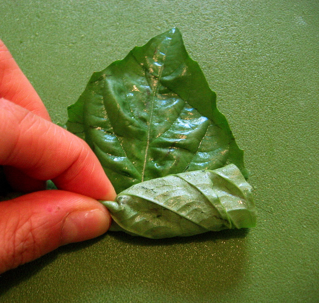 Beginning at the base, roll the stack of leaves tightly as you would a burrito.