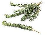 Leg of Lamb With Garlic and Rosemary