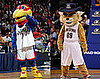 March Madness: Sweet Sixteen Mascot Quiz