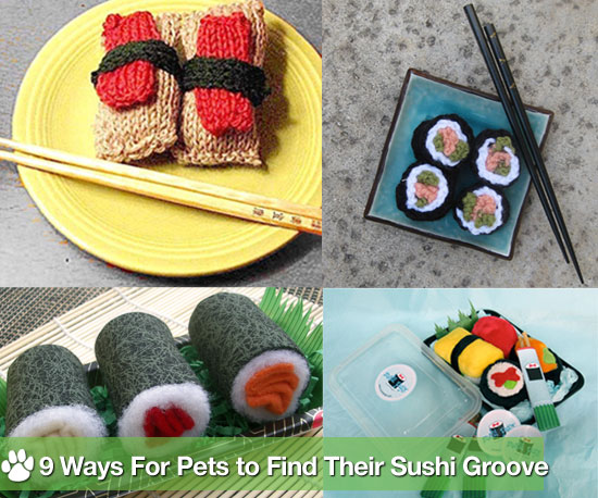 Trend Setters: Your Furry Gourmands Can Enjoy Sushi, Too