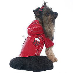 Lady Bug Dog Raincoat ($15)