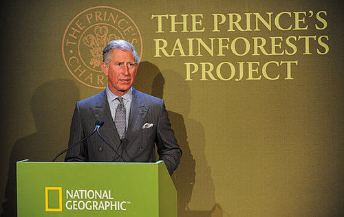 Watch Prince Charles's Rainforest Campaign Video Starring Prince William, Prince Harry, Daniel Craig, Harrison Ford Et Al