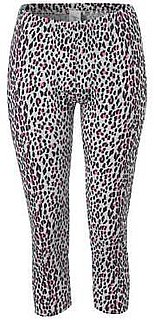Animal Print Leggings Leopard