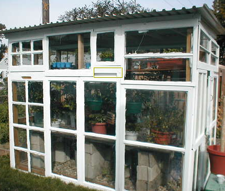 A Greenhouse From Windows