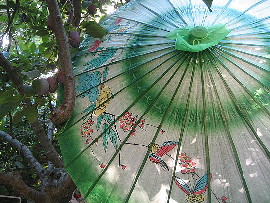 For a casual backyard soirée, simply add parasols to a backyard tree.